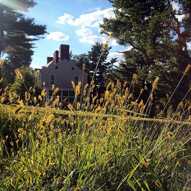 Ah, autumn cometh @lamontearth @climatesociety
